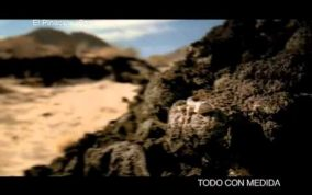Massimo Righi - Corona commercial - 3d red hawk -