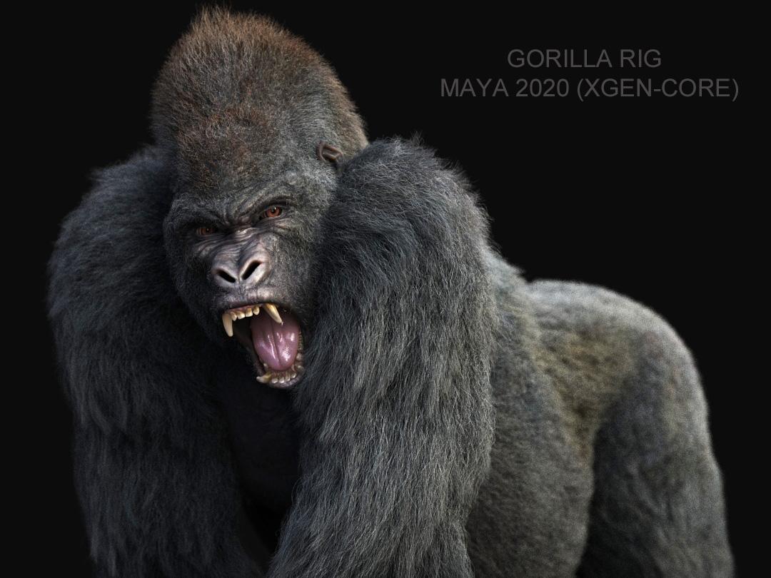 Buy Gorilla (RIG) (XGEN-CORE) Online