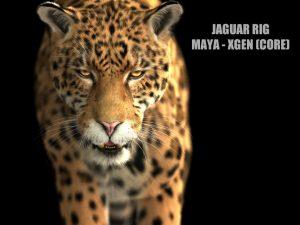 Jaguar RIG (Xgen-core)